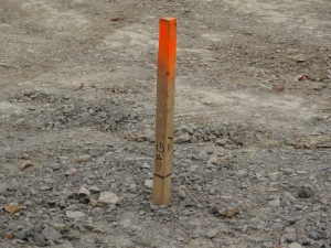 The only thing present are a bunch of these survey stakes.